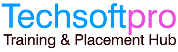 www.techsoftpro.com
